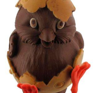 chocoladen kuiken