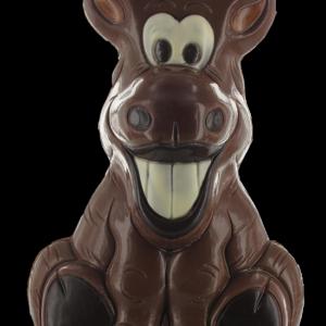 lachende ezel in chocolade
