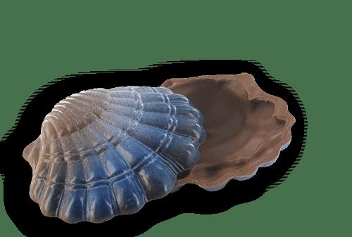chocolade schelpen
